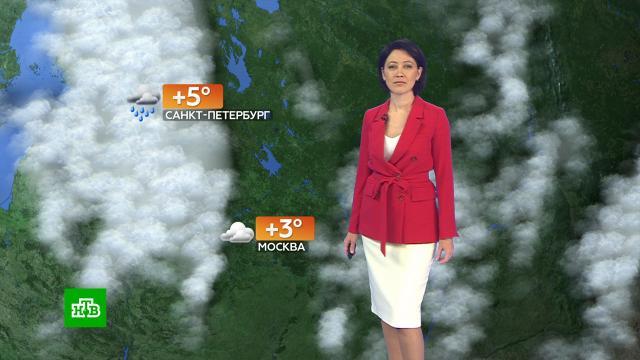 Прогноз погоды на 20октября.погода, прогноз погоды.НТВ.Ru: новости, видео, программы телеканала НТВ