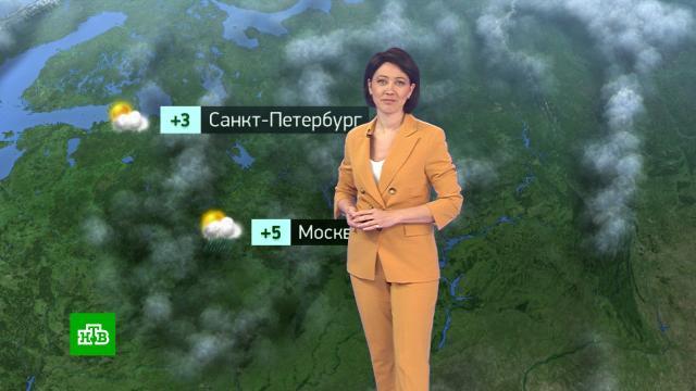Утренний прогноз погоды на 19 октября..погода, прогноз погоды.НТВ.Ru: новости, видео, программы телеканала НТВ