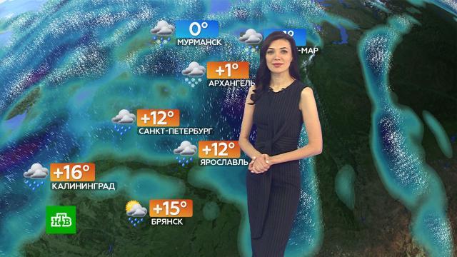 Прогноз погоды на 21октября.погода, прогноз погоды.НТВ.Ru: новости, видео, программы телеканала НТВ