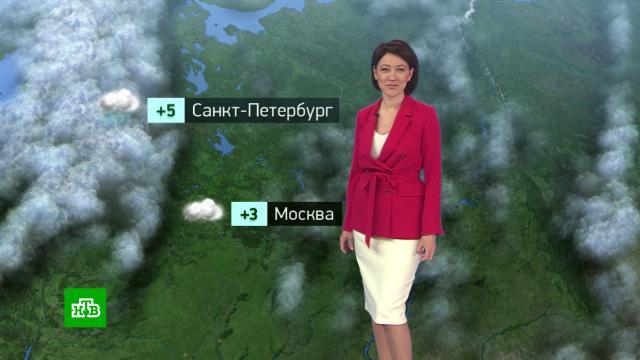 Утренний прогноз погоды на 20 октября..погода, прогноз погоды.НТВ.Ru: новости, видео, программы телеканала НТВ