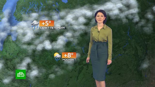 Прогноз погоды на 23октября.погода, прогноз погоды.НТВ.Ru: новости, видео, программы телеканала НТВ
