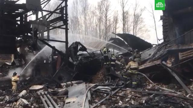 Подтверждена гибель 16человек при пожаре под Рязанью.Рязанская область, Рязань, пожары.НТВ.Ru: новости, видео, программы телеканала НТВ