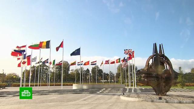 Шойгу заявил онеготовности НАТО кравноправному диалогу сРоссией.Германия, Минобороны РФ, НАТО, Шойгу.НТВ.Ru: новости, видео, программы телеканала НТВ