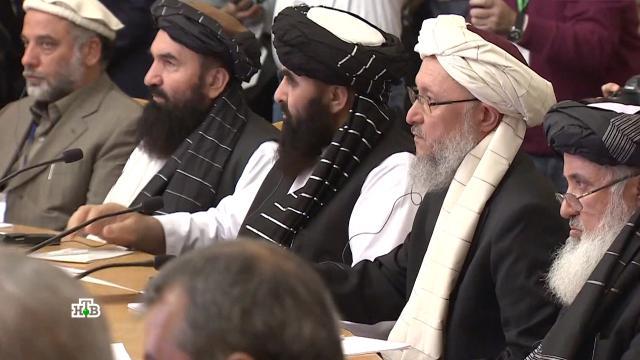 «Осторожный игрок»: вМоскве объяснили позицию по талибам иАфганистану.ОДКБ, Талибан, переговоры, терроризм, учения.НТВ.Ru: новости, видео, программы телеканала НТВ