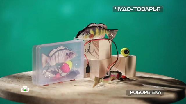 Роботизированная рыбка-приманка иводородное мыло против старения.НТВ, изобретения, инновации, наука и открытия, технологии.НТВ.Ru: новости, видео, программы телеканала НТВ