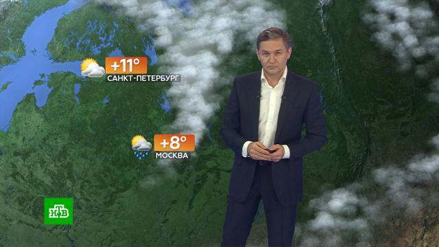 Прогноз погоды на 29октября.погода, прогноз погоды.НТВ.Ru: новости, видео, программы телеканала НТВ