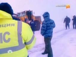 Выпуск от 17февраля 2012года.Когда отступят холода?НТВ.Ru: новости, видео, программы телеканала НТВ