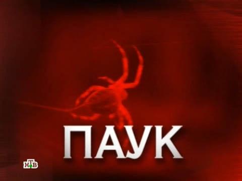Выпуск от 18февраля 2012года.«Паук».НТВ.Ru: новости, видео, программы телеканала НТВ
