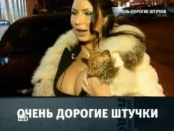 «Очень дорогие штучки».«Очень дорогие штучки».НТВ.Ru: новости, видео, программы телеканала НТВ