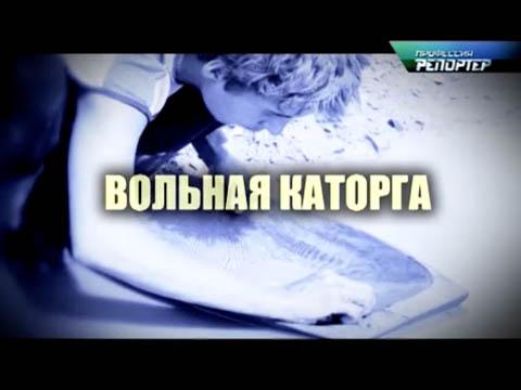 «Вольная каторга».«Вольная каторга».НТВ.Ru: новости, видео, программы телеканала НТВ