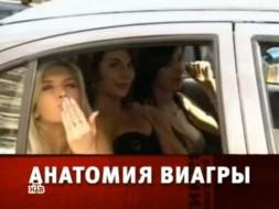 «Анатомия Виагры».«Анатомия Виагры».НТВ.Ru: новости, видео, программы телеканала НТВ