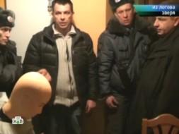 «Из логова зверя».«Из логова зверя».НТВ.Ru: новости, видео, программы телеканала НТВ