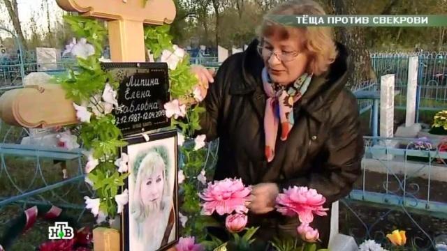 «Теща против свекрови».«Теща против свекрови».НТВ.Ru: новости, видео, программы телеканала НТВ