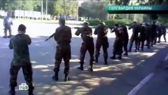 «Гопгвардия Украины».«Гопгвардия Украины».НТВ.Ru: новости, видео, программы телеканала НТВ