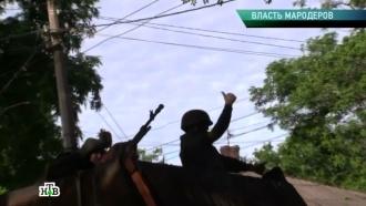«Власть мародеров».«Власть мародеров».НТВ.Ru: новости, видео, программы телеканала НТВ