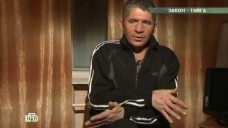 Выпуск от 28июня 2014года.«Закон тайги».НТВ.Ru: новости, видео, программы телеканала НТВ