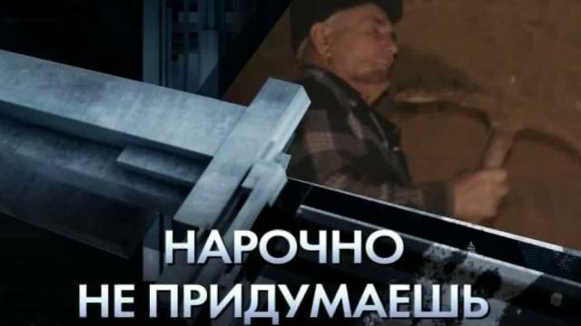 «Нарочно не придумаешь».«Нарочно не придумаешь».НТВ.Ru: новости, видео, программы телеканала НТВ