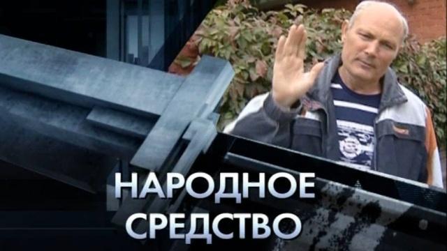 «Народное средство».«Народное средство».НТВ.Ru: новости, видео, программы телеканала НТВ