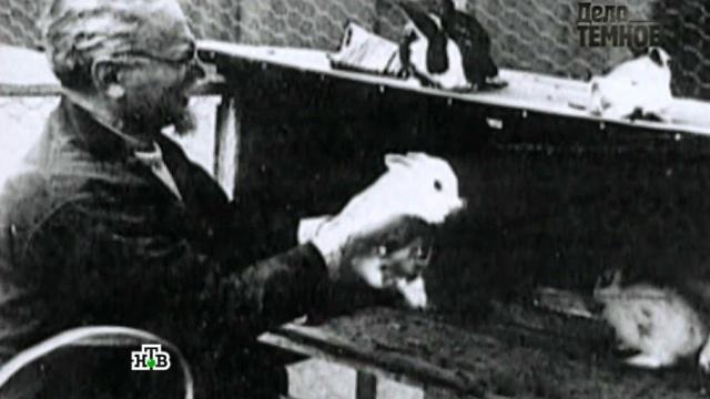 «Кто убил Льва Троцкого?».«Кто убил Льва Троцкого?».НТВ.Ru: новости, видео, программы телеканала НТВ