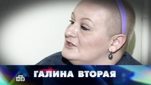 «Правнучка Брежнева».«Галина Вторая».НТВ.Ru: новости, видео, программы телеканала НТВ