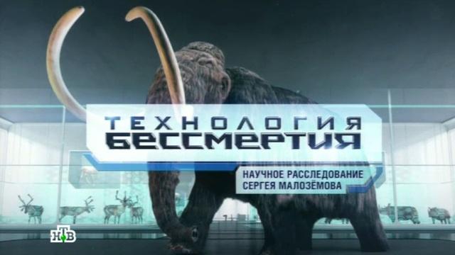 «Технология бессмертия»: как клонирование живых организмов стало реальностью — в фильме НТВ.НТВ, клонирование, наука и открытия, премьера, эксклюзив.НТВ.Ru: новости, видео, программы телеканала НТВ