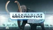 «Технология бессмертия». Научное расследование Сергея Малозёмова.НТВ.Ru: новости, видео, программы телеканала НТВ