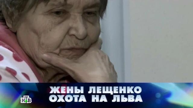 «Жены Лещенко: охота на Льва».«Жены Лещенко: охота на Льва».НТВ.Ru: новости, видео, программы телеканала НТВ