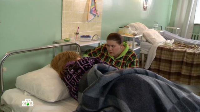 «Друзья по несчастью».«Друзья по несчастью».НТВ.Ru: новости, видео, программы телеканала НТВ