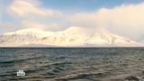 Норвегия: далекий Шпицберген.НТВ.Ru: новости, видео, программы телеканала НТВ