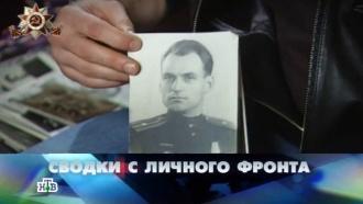 «Сводки сличного фронта».«Сводки сличного фронта».НТВ.Ru: новости, видео, программы телеканала НТВ
