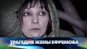 «Трагедия жены Ефремова».«Трагедия жены Ефремова».НТВ.Ru: новости, видео, программы телеканала НТВ