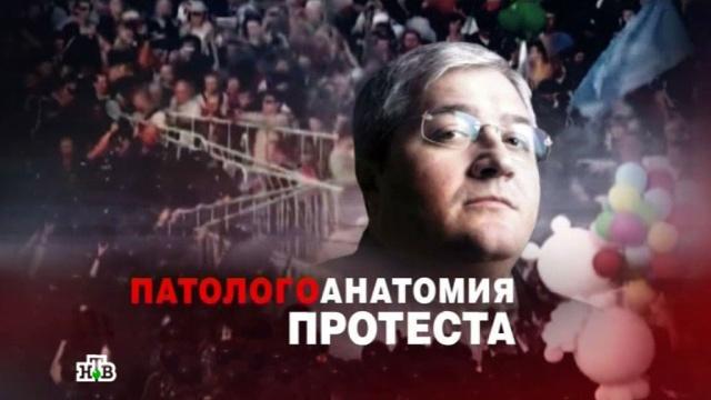 «ЧП. Расследование»: «Патологоанатомия протеста».митинги и протесты, скандалы.НТВ.Ru: новости, видео, программы телеканала НТВ
