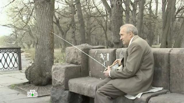 «Корпорация самоубийц».«Корпорация самоубийц».НТВ.Ru: новости, видео, программы телеканала НТВ
