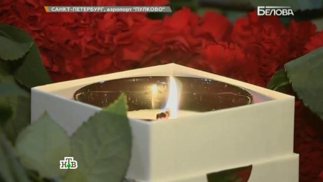 Выпуск от 31 октября 2015 года.Выпуск от 31 октября 2015 года.НТВ.Ru: новости, видео, программы телеканала НТВ