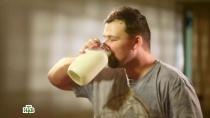 «Молоко».«Молоко».НТВ.Ru: новости, видео, программы телеканала НТВ