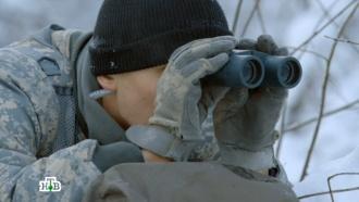«Морские дьяволы. Смерч — 3». 12-я серия.12-я серия.НТВ.Ru: новости, видео, программы телеканала НТВ
