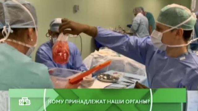 Выпуск от 24 марта 2016 года.Кому принадлежат наши органы?НТВ.Ru: новости, видео, программы телеканала НТВ