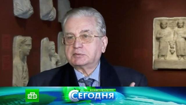 28 марта 2016 года. 16:00.28 марта 2016 года. 16:00.НТВ.Ru: новости, видео, программы телеканала НТВ
