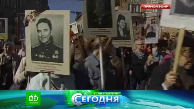 5 мая 2016 года. 16:00.5 мая 2016 года. 16:00.НТВ.Ru: новости, видео, программы телеканала НТВ