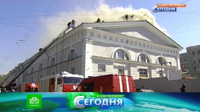 6 мая 2016 года. 16:00.6 мая 2016 года. 16:00.НТВ.Ru: новости, видео, программы телеканала НТВ