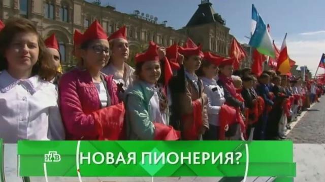 Выпуск от 19 мая 2016 года.Новая пионерия?НТВ.Ru: новости, видео, программы телеканала НТВ