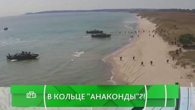 Выпуск от 8 июня 2016 года.В кольце «Анаконды»?!НТВ.Ru: новости, видео, программы телеканала НТВ