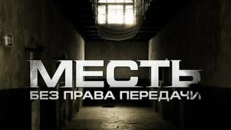 Остросюжетный фильм «Месть без права передачи»