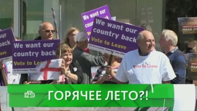 Выпуск от 30 июня 2016 года.Горячее лето?!НТВ.Ru: новости, видео, программы телеканала НТВ