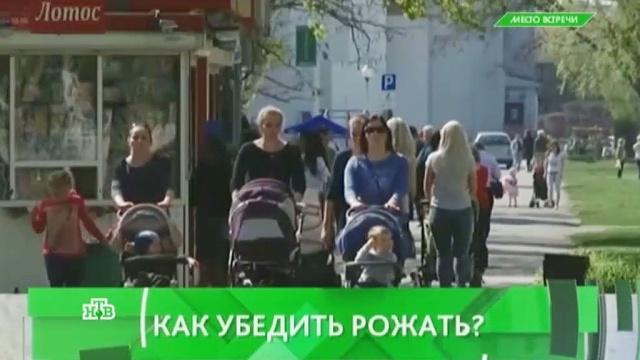 Выпуск от 8 июля 2016 года.Как убедить женщин рожать?НТВ.Ru: новости, видео, программы телеканала НТВ