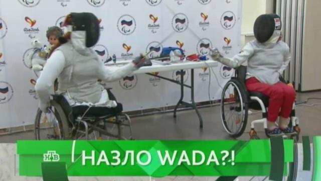 Выпуск от 22 августа 2016 года.Назло WADA?НТВ.Ru: новости, видео, программы телеканала НТВ