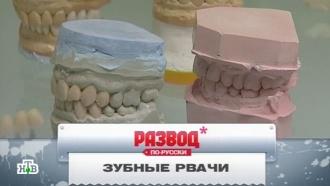 «Зубные рвачи».«Зубные рвачи».НТВ.Ru: новости, видео, программы телеканала НТВ