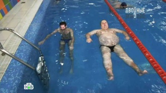 29 октября 2016 года.Толстые и тонкие.НТВ.Ru: новости, видео, программы телеканала НТВ
