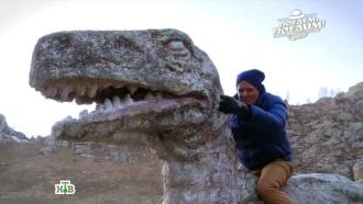 «Поедем, поедим!»: Монголия