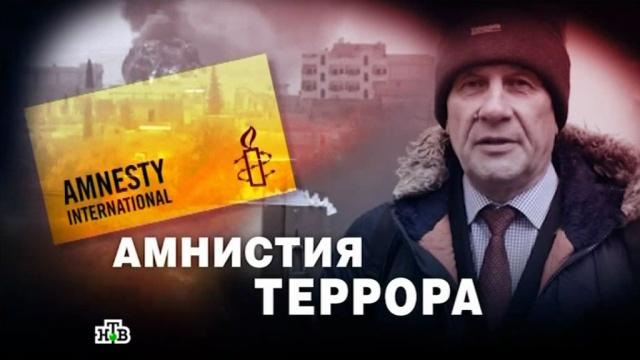 Как правозащитники из Amnesty International спровоцировали кровавый теракт: расследование НТВ.войны и вооруженные конфликты, правозащитники, пытки, терроризм, Турция, Украина, эксклюзив.НТВ.Ru: новости, видео, программы телеканала НТВ